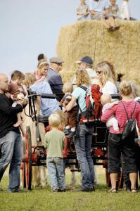 Høstmarkede