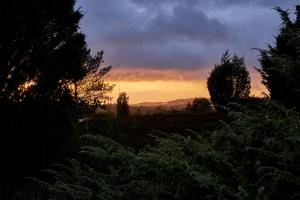 Forgrund og baggrund i solnedgang - FUJIFILM X-T1