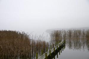Bro i tågen