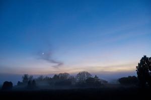 Tåge over Salten Langsø