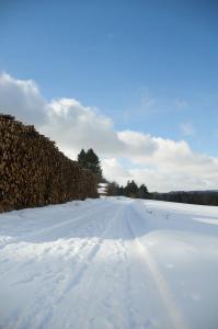 Snedækket Skovvej