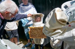 Besøg hos bierne